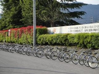自転車整列