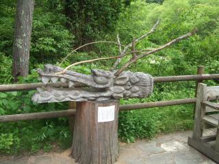 烏川渓谷緑地 竜