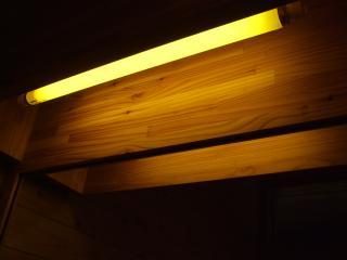 烏川渓谷緑地 トイレの電気