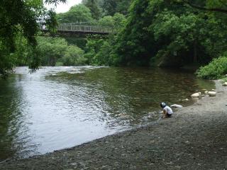 烏川渓谷緑地 水辺
