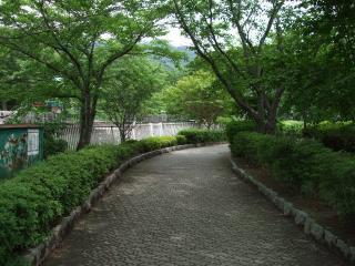 龍門渕公園の遊歩道