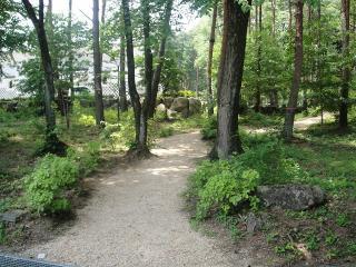 健康の森、山道
