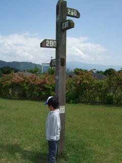 南部公園の身長計