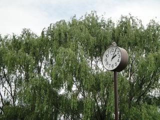 緑ヶ丘公園の時計