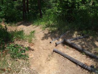 アグリパーク 急斜面の歩道