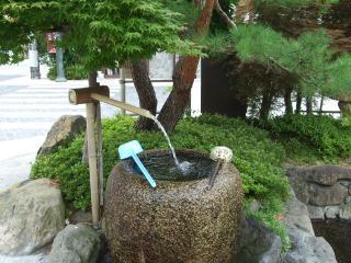 辰巳の庭公園 湧き水