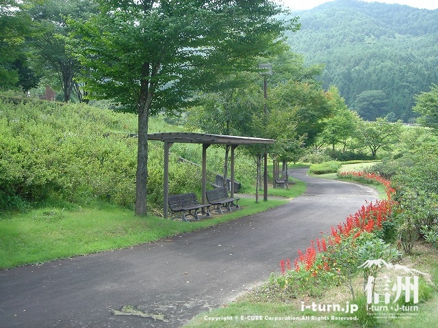 鳩吹公園の散歩通路