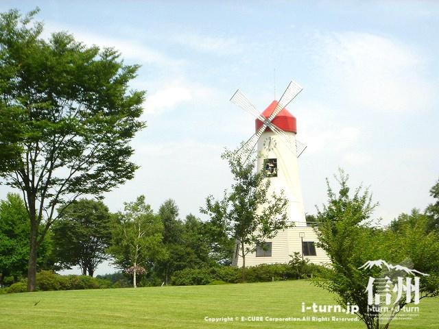 鳩吹公園の芝公園と風車時計