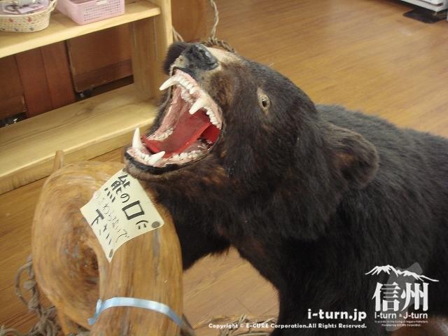 クマの置物もお出迎え