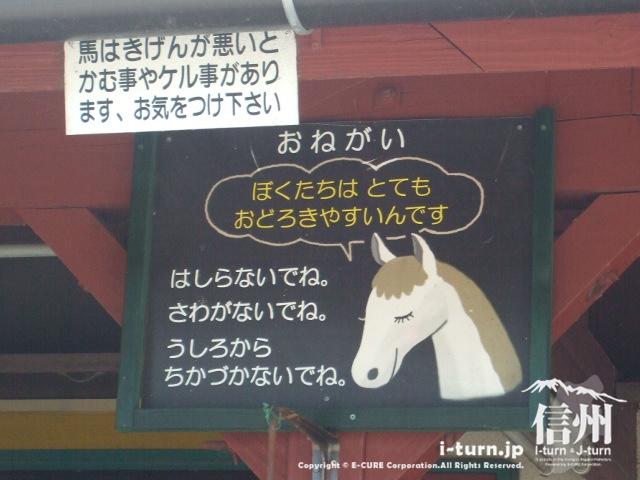 馬からのおねがい