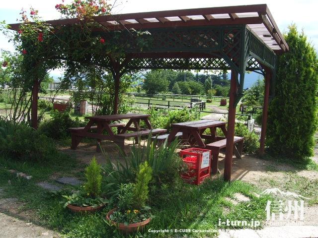 木陰のテーブルとイス
