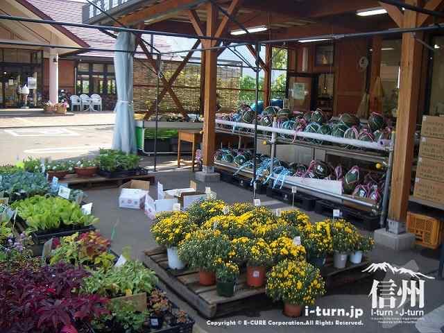 山辺ワイナリーにある花売り場