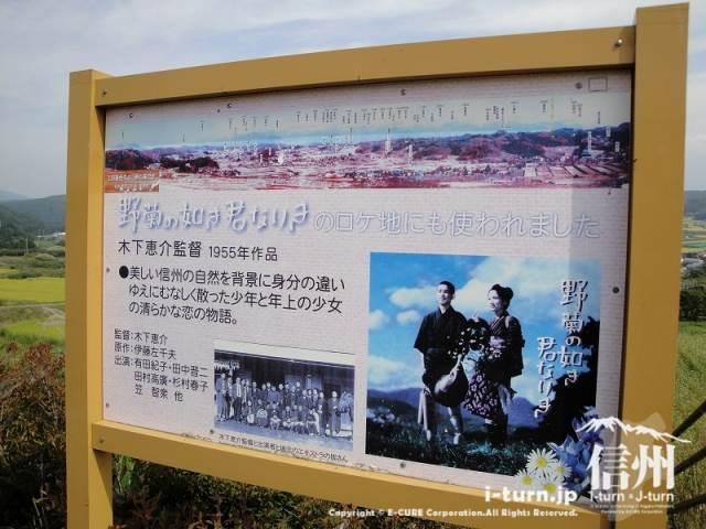 飯綱町よこ亭の駐車場の看板、「野菊の如き君なりき」のロケ地