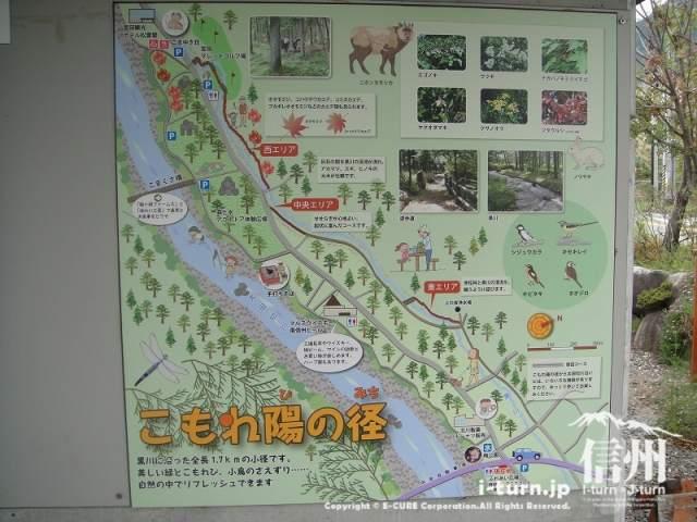 宮田村ふれあい広場 こもれ陽の径