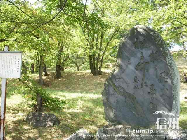 加藤犀水句碑・松に竹に梅に飛ぶへう春の鳥と彫られています。