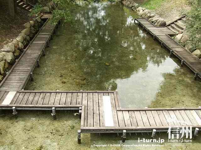 かじかゾーンの水は透明