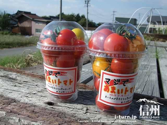 マジであまいトマト|プティ・マルシェ朝づみ畑・あづみ野ファーム|安曇野市