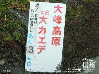 大峰高原大カエデ あと3キロ