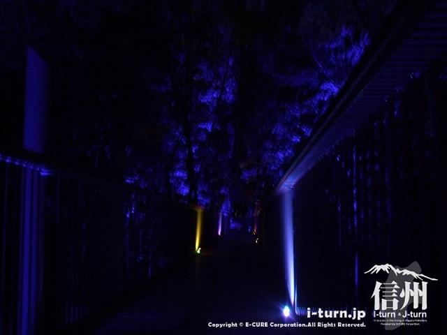 アルプスあかりの森 ブルーライトに照らされた空中回廊