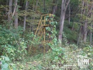 旧国鉄篠ノ井線廃線敷 当時のまま放置