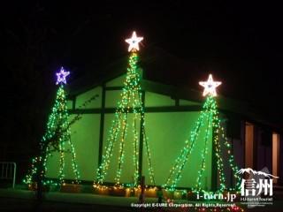 クリスマスツリー三本
