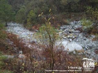 洪水吐きの下は川