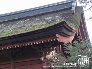 屋根のみアップ