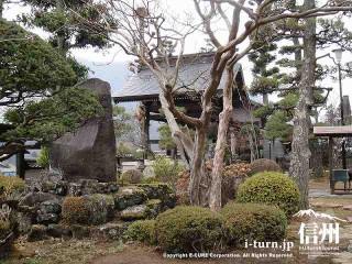 さるすべりの木とつつじと大きな置石