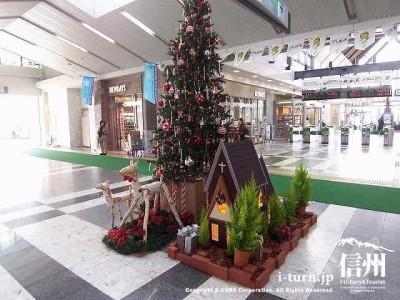 構内Ⅲクリスマスツリー