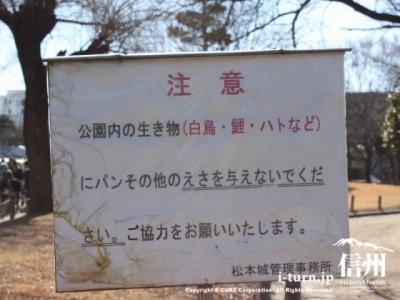 松本城公園の注意書き