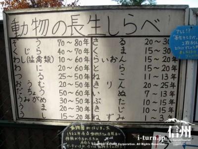 須坂市動物園の通路「長生くらべその2??」