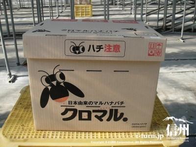 シンプルな箱
