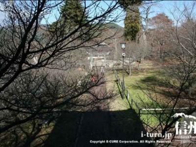 太鼓櫓からの眺め