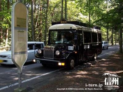 三笠通り落葉松並木 美術館めぐりバス