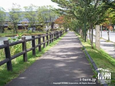 大賀通り遊歩道1