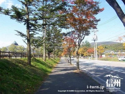 大賀通り遊歩道3