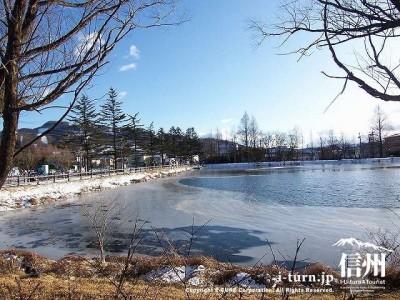 矢ケ崎公園 冬の矢ケ崎公園