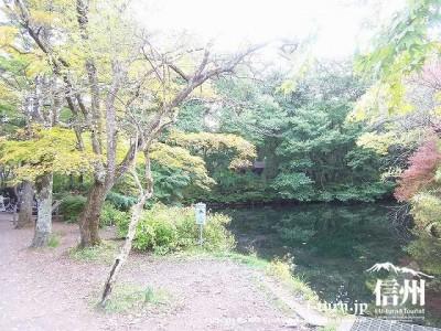 雲場池(初秋)3