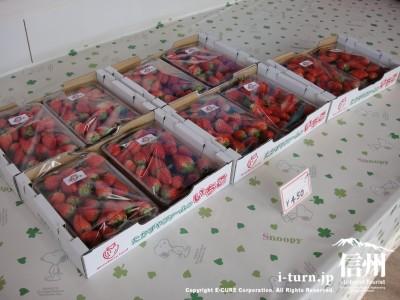 販売しているイチゴ、不揃いお得タイプ