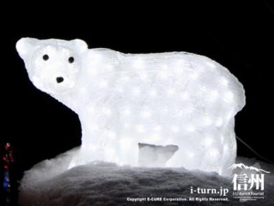 白クマのイルミネーション