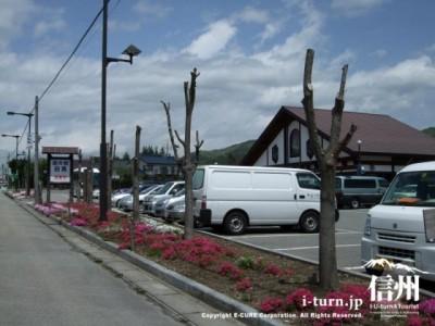 春の道の駅