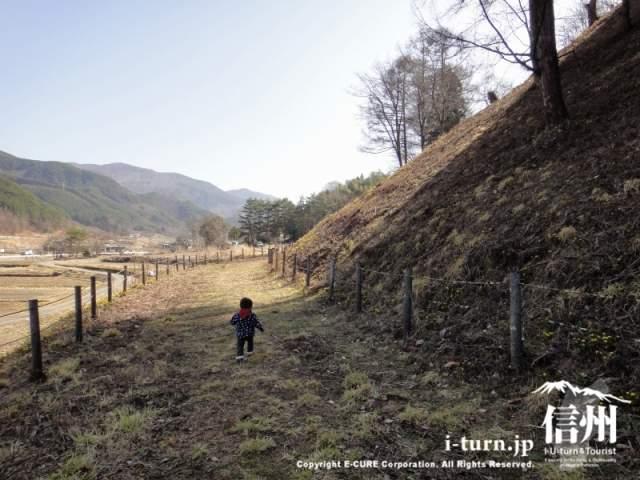 里山を走る子