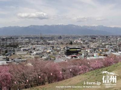 頂上からの景色(西側)①
