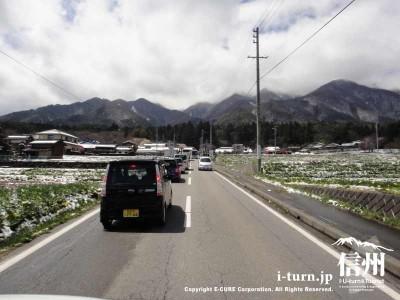 光前寺までの一本道は渋滞