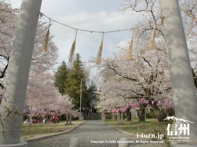 鳥居から神社の風景
