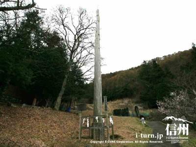 前宮一之御柱 全体 2004年建て御柱