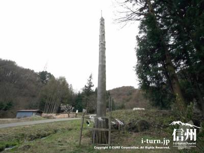 前宮三之御柱 全体 2004年建て御柱