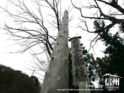 前宮二之御柱 アップ 2004年建て御柱