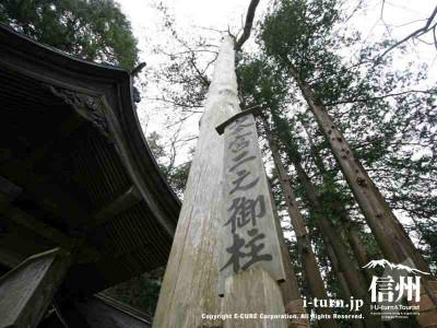 本宮二之御柱 アップ 2004年建て御柱