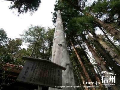 春宮一之御柱 案内版 2004年建て御柱